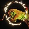 Цирки в Усть-Донецком