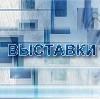 Выставки в Усть-Донецком