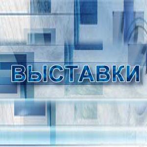 Выставки Усть-Донецкого